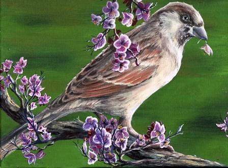 Sparrow by Greg Farrugia art print