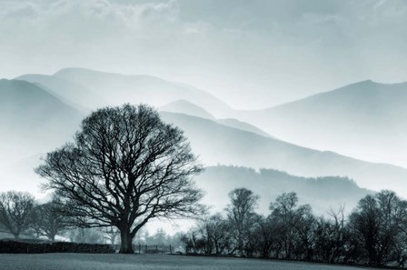 Blue Landscape with Tree by Tom Quartermaine art print