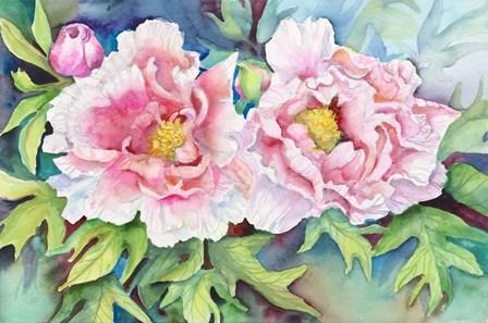 A Pair of Peonies by Joanne Porter art print