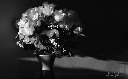 Flowers In Light by 5fishcreative art print