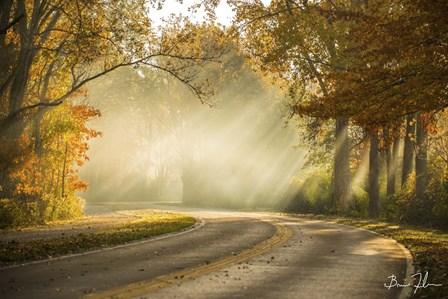 Autumn Drive by 5fishcreative art print