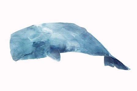 Whale by Isabelle Z art print