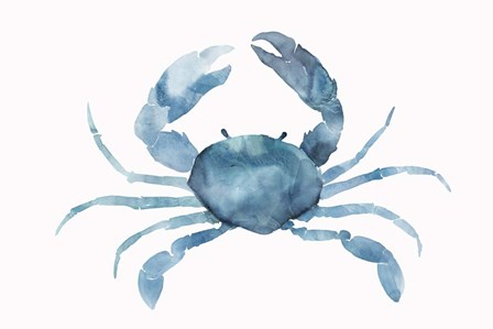 Blue Crab by Isabelle Z art print