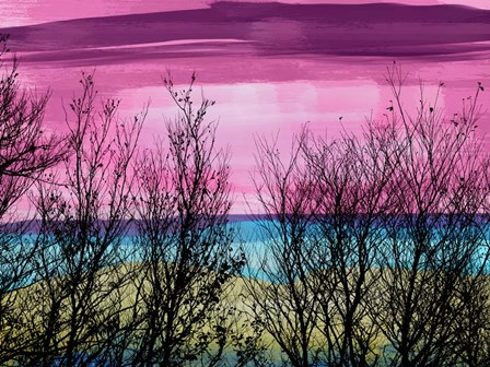 Tree Sunset 2 by Skip Nall art print