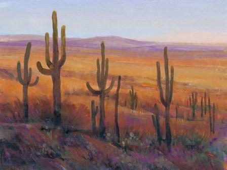 Desert Light I by Timothy O'Toole art print