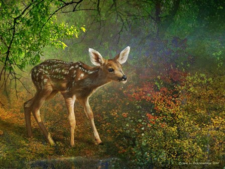 Forest Fawn by Chris Vest art print