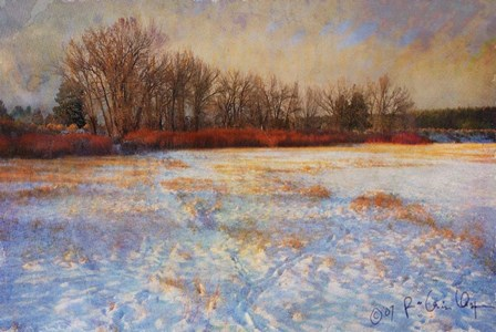 Willows Frozen Cottonwood by Chris Vest art print