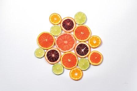 Sunny Citrus I by Felicity Bradley art print