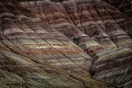 Paria Canyon by Duncan art print