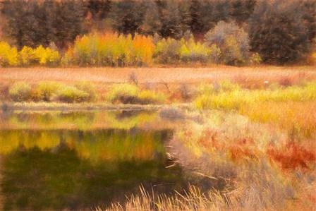 Autumn Pond by Ramona Murdock art print