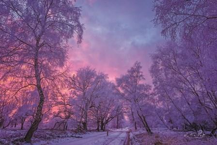 Winter Wonderland by Martin Podt art print