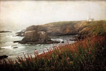 Coastal Mist by Debra Van Swearingen art print