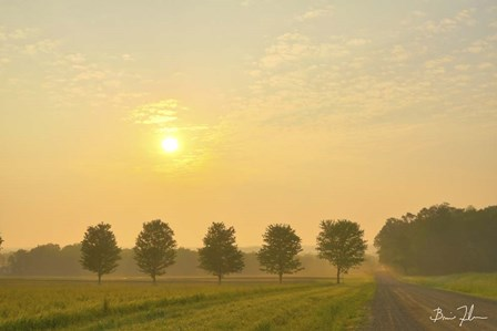Country Morning Glow by 5fishcreative art print