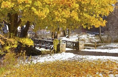 Autumn Snow by 5fishcreative art print
