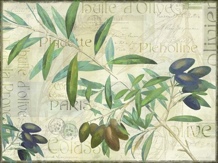 Olives Picholines by Cora Niele art print