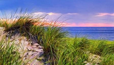 Cape-Dune Sunset by Tammy Wetzel art print
