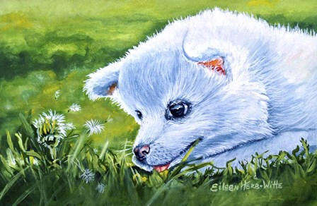 Making A Wish White Dog by Eileen Herb-Witte art print